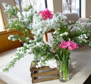 spring__1