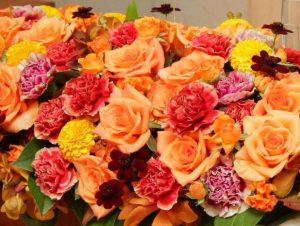autumn_flower1