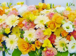 autumn_flower2